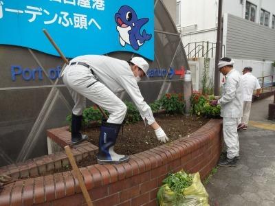 ガーデンふ頭総合案内所前花壇の植替えR3.7.12_d0338682_14340517.jpg