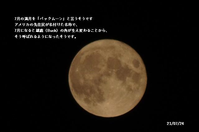 7月の満月 、オリンピック _c0051105_23131003.jpg