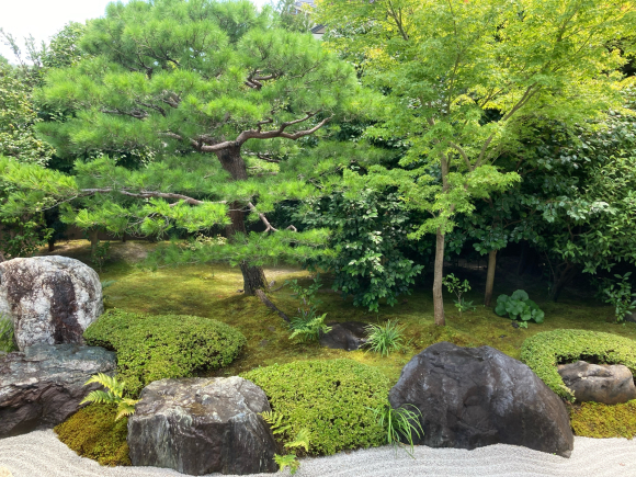 京都へ。_a0098418_16424104.jpg