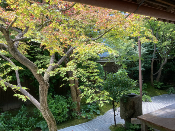 京都へ。_a0098418_16424287.jpg