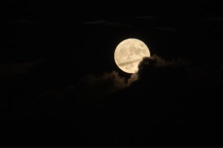 月と星に照らされて_a0025576_23023016.jpg