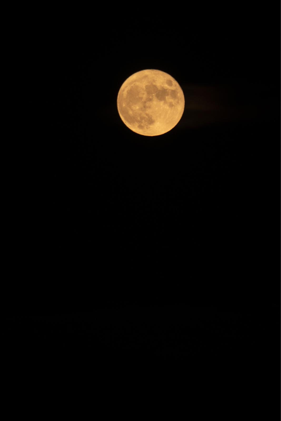 月と星に照らされて_a0025576_23023168.jpg