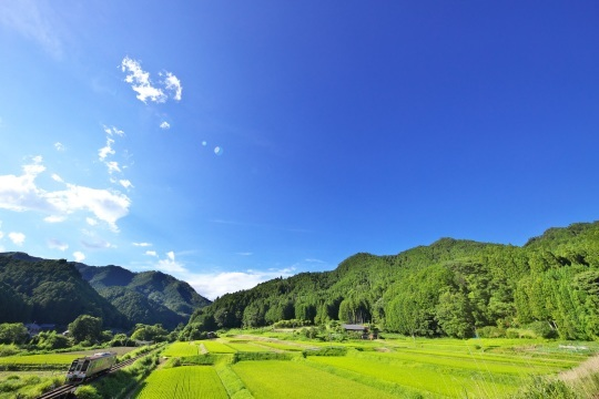 田園風景の名松線_f0266284_11523500.jpeg