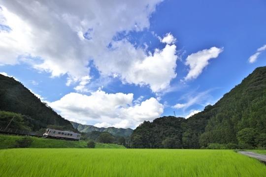 田園風景の名松線_f0266284_11525750.jpeg