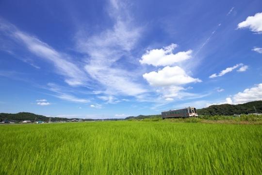 田園風景の名松線_f0266284_11532130.jpeg