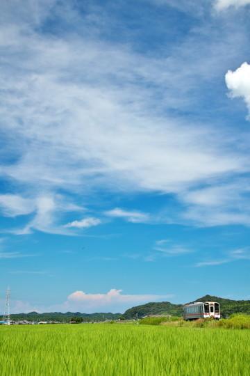 田園風景の名松線_f0266284_11533548.jpeg