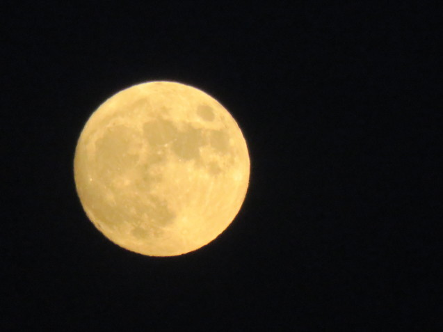 小望月と満月_f0204295_20040707.jpg