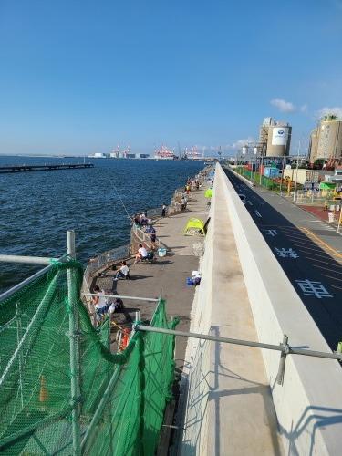 海釣り公園に行く_e0149405_18101276.jpg