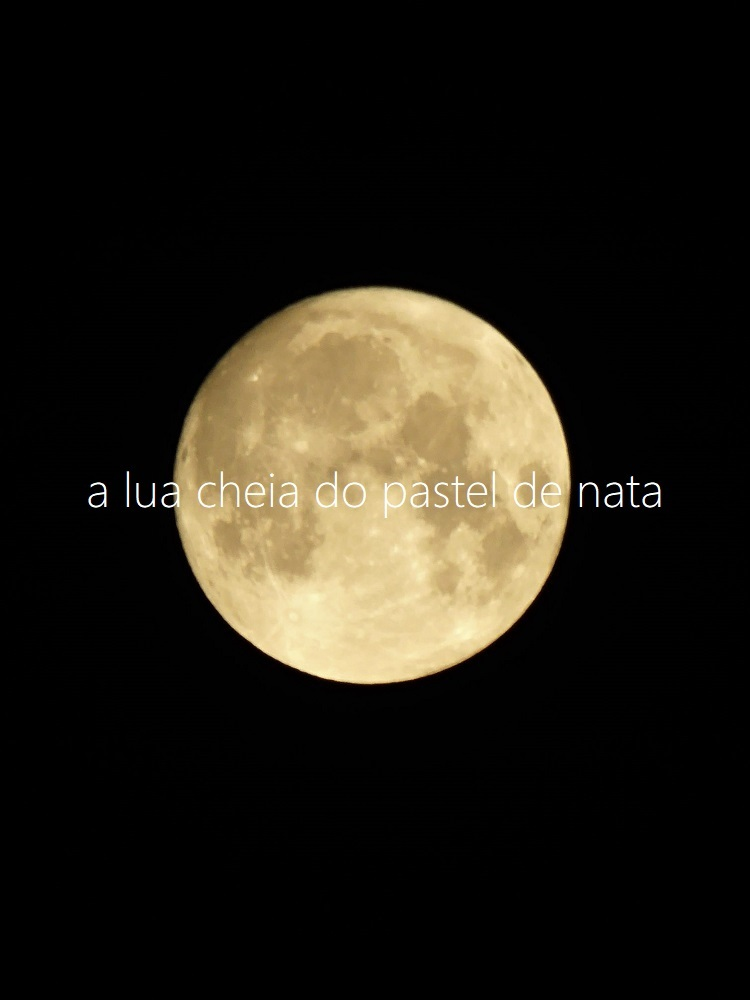 パステルデナタと満月_d0159066_13485982.jpg