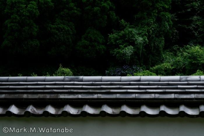 おたまや公園を散策_e0135098_06463316.jpg