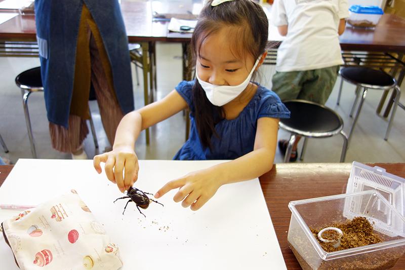 児童画クラス「カブトムシを描こう」_b0212226_11053863.jpg