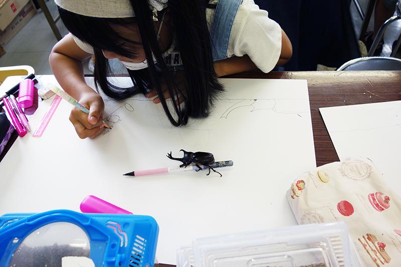 児童画クラス「カブトムシを描こう」_b0212226_11090809.jpg
