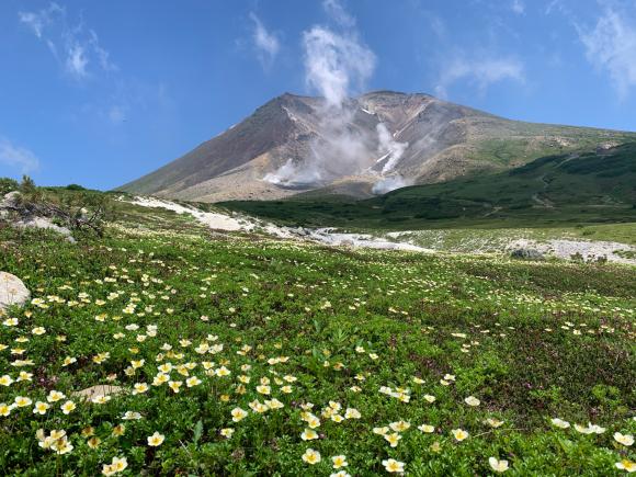 夏の旭岳_f0096216_06022592.jpg