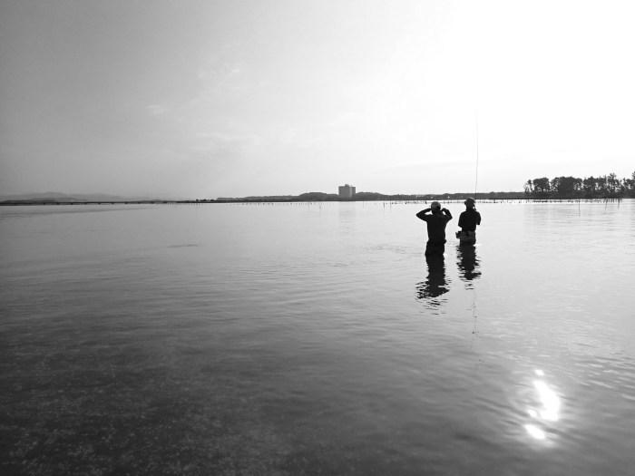 真夏の浜名湖で初心者育成_c0120834_08311693.jpg