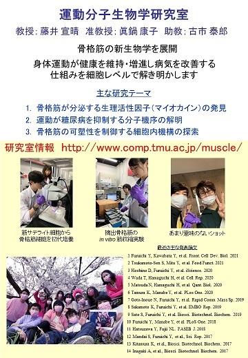 ラボの広告 - 東京都立大学 運動分子生物学研究室 藤井・眞鍋グループ