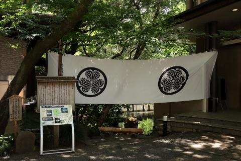 久しぶりに静岡へ_d0013443_22264374.jpg