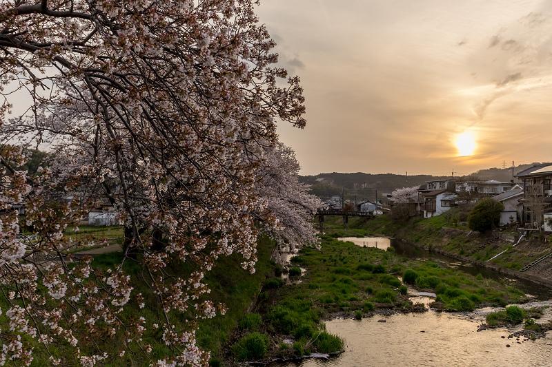 2021桜咲く京都 夕景・やすらぎの道(田原川)_f0155048_22333095.jpg