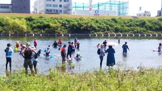 2021/7/28の川あそびと諸注意について_c0120851_17583900.jpg