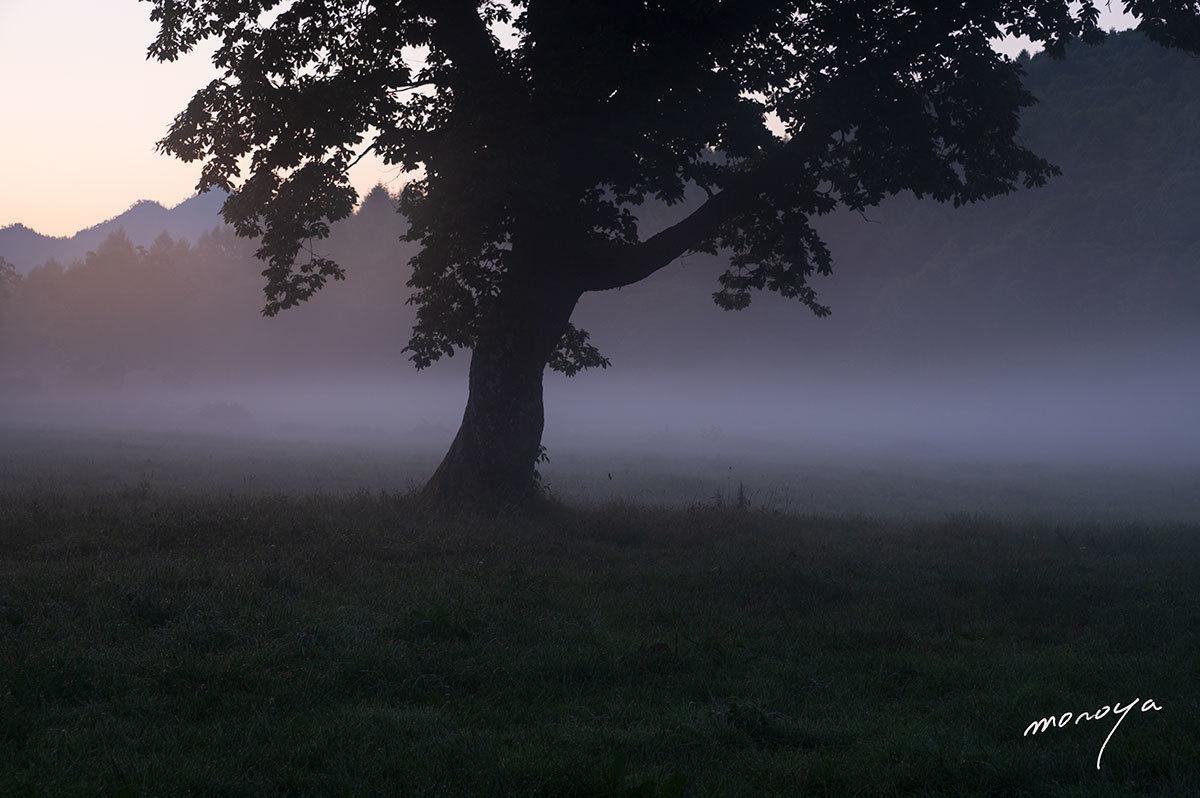 高原の静かな夜明け_c0085877_05482976.jpg