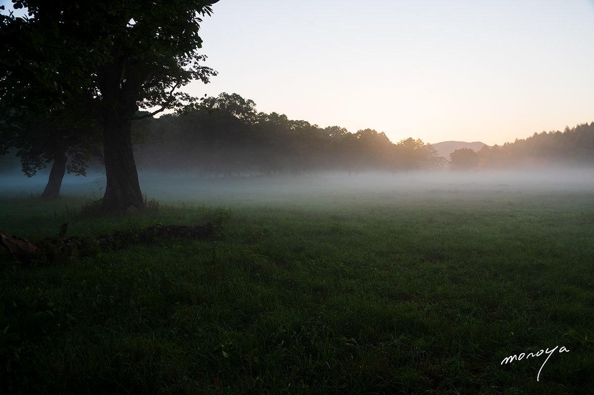 高原の静かな夜明け_c0085877_05501032.jpg