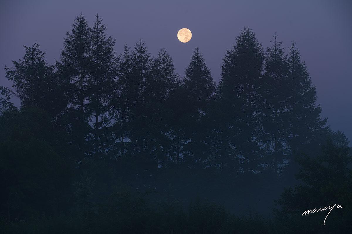高原の静かな夜明け_c0085877_05501484.jpg