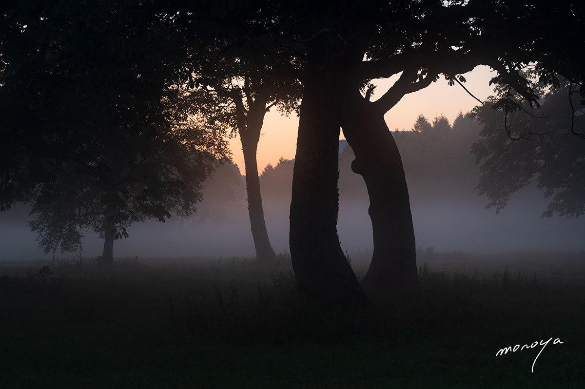 高原の静かな夜明け_c0085877_05501699.jpg
