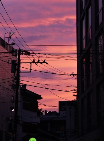 夕焼けの街角_f0006713_22112656.jpg