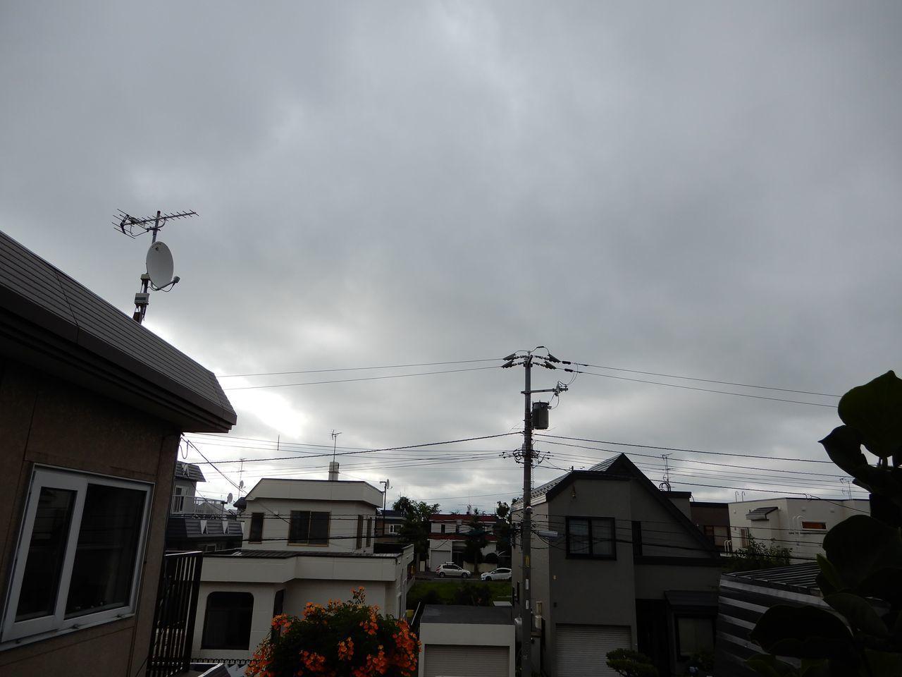 7月7日以来のほんのちょっとのお湿り_c0025115_21462674.jpg