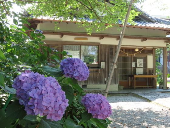 徐福公園・阿須賀神社散策(撮影:6月10日)_e0321325_14434248.jpg