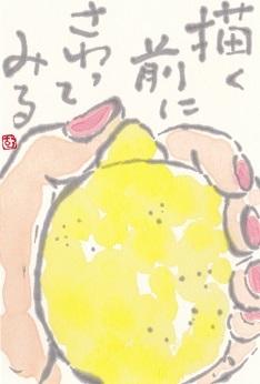 レモン「描く前にさわってみる」_b0124466_08021575.jpg