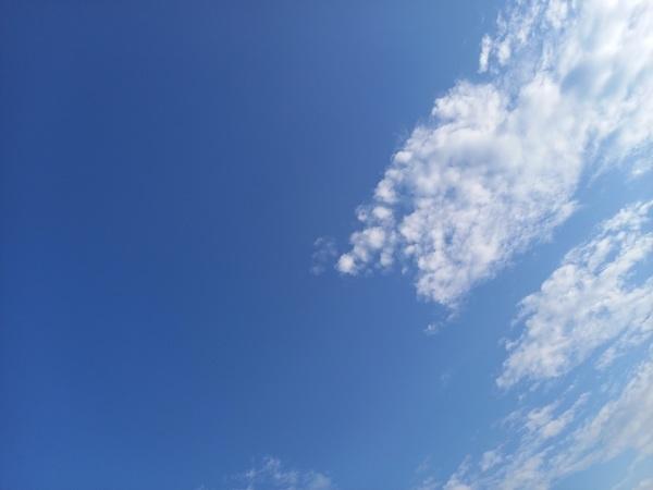 😅🌞畦野駅前は真正面から太陽ビーム🌞今日も監査で缶詰チーム📝あっという間に終わる1週間💦感染拡大がおさまりません&#12_f0061067_23092895.jpg