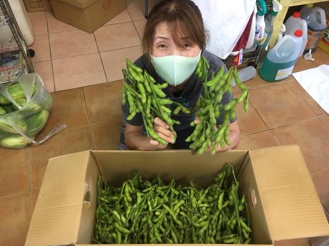 7月31日 枝豆いっぱい♪_b0158746_11041959.jpeg