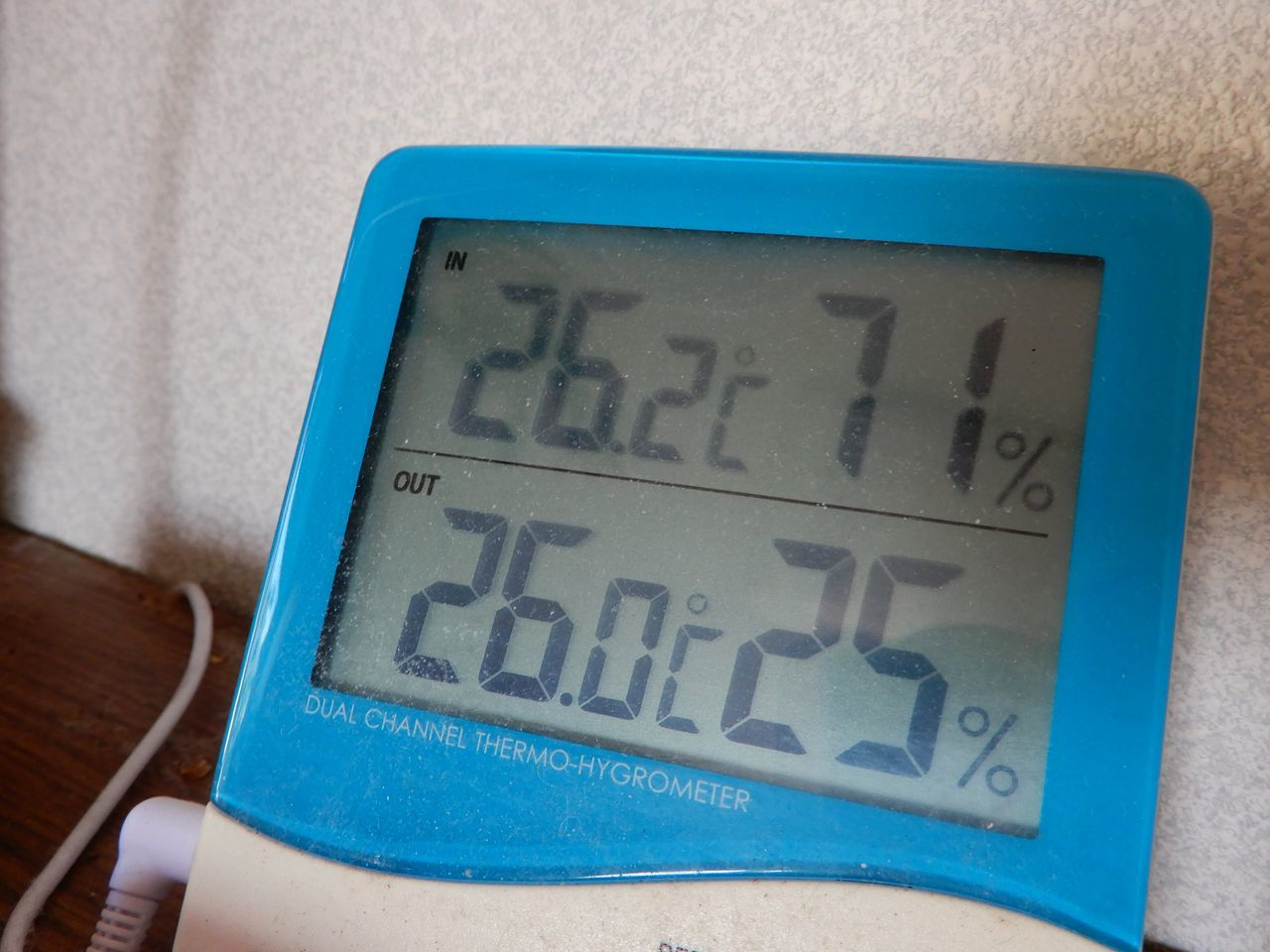 ぎりぎり猛暑日届かず_c0025115_01245840.jpg