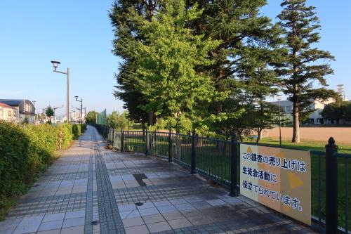 朝の散歩 2021.8.2 快晴_c0075701_06452546.jpg