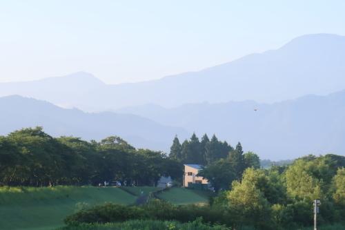 朝の散歩 2021.8.2 快晴_c0075701_06472699.jpg