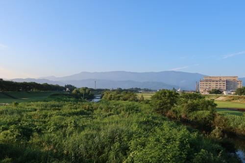 朝の散歩 2021.8.2 快晴_c0075701_06473258.jpg