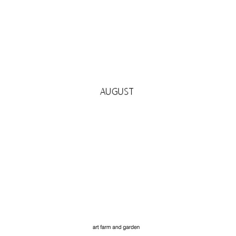 8月の庭/art farm & garden_b0290469_10145315.jpg