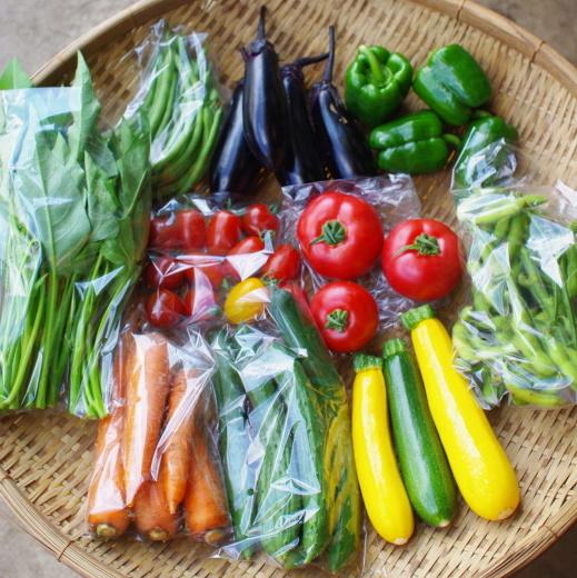 今週の野菜セット(8/3~8/7着)_c0110869_12125795.jpg