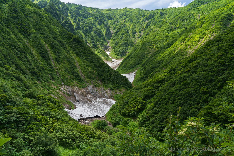真夏の雪渓_e0214470_20123557.jpg
