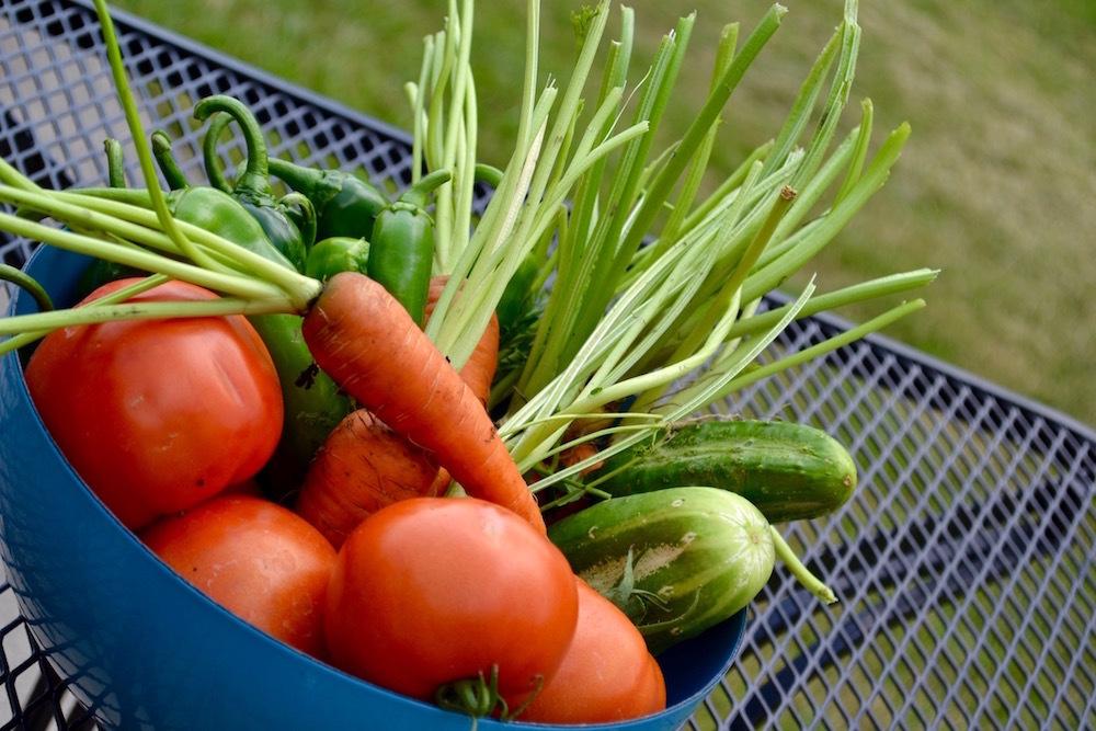 野菜ときのこ - ポップ456