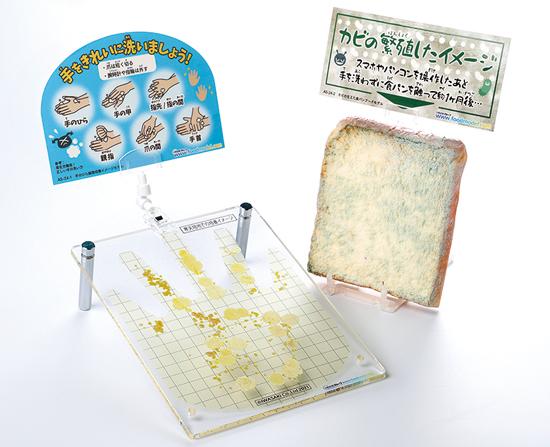 手のひら細菌培養イメージモデル(カビの生えた食パン付)新発売_b0082979_16490426.jpg