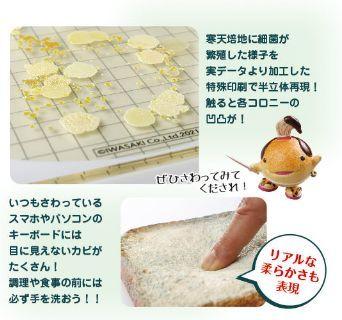 手のひら細菌培養イメージモデル(カビの生えた食パン付)新発売_b0082979_16490491.jpg