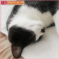 すごいお顔_a0389088_16582899.jpg