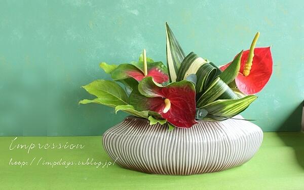 定期装花から アンスリューム:トリニダード_a0085317_20120097.jpg