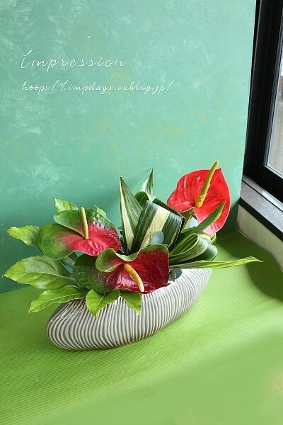 定期装花から アンスリューム:トリニダード_a0085317_20120505.jpg