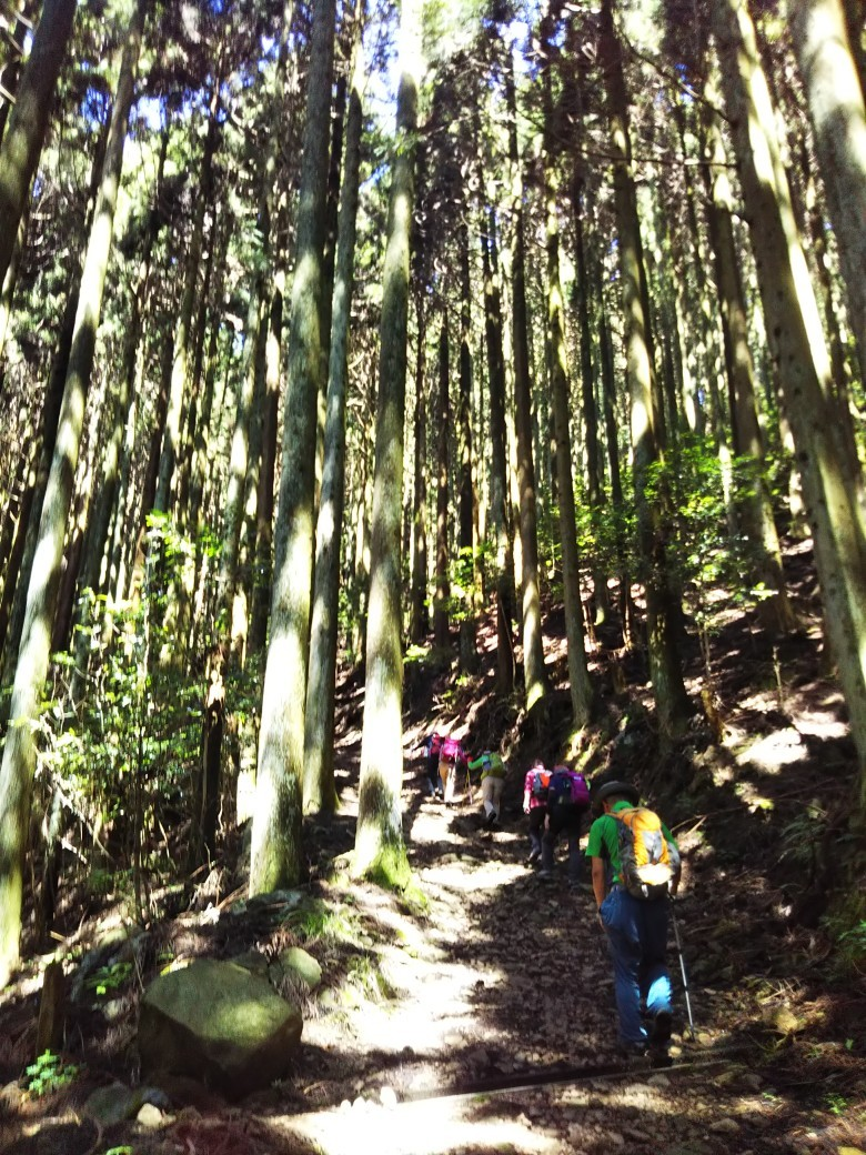 播磨富士 笠形山_c0218841_19405683.jpg
