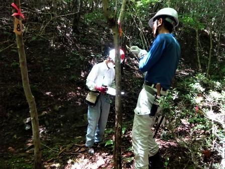 みんなの森活動日記_d0105723_07564675.jpg