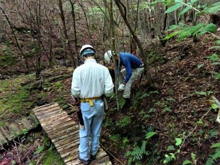 みんなの森活動日記_d0105723_07565711.jpg