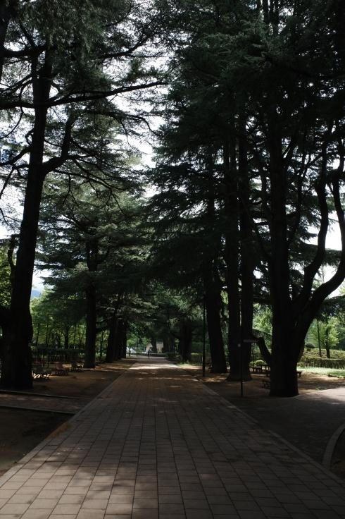 ブロンプトンと夏の長野県へ その4 ~ あがたの森文化会館  松本民芸館_a0287336_17360936.jpg