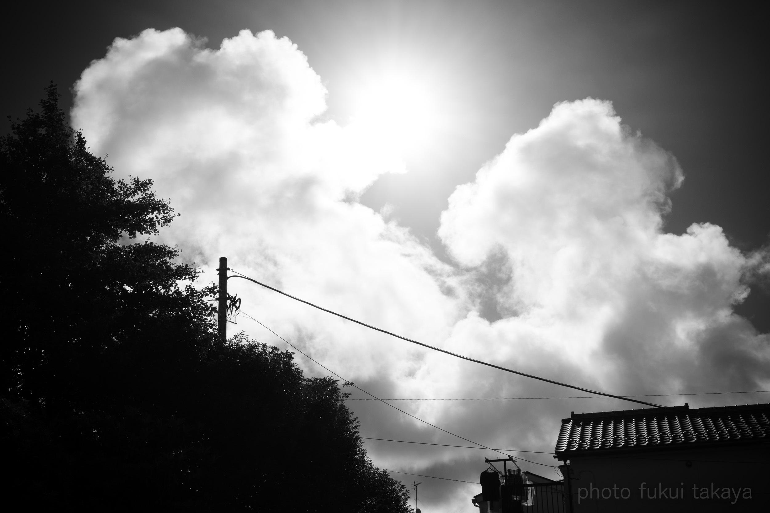 夏が好き!とか言っていたのは遠い昔の話だ。_e0044885_14472534.jpeg